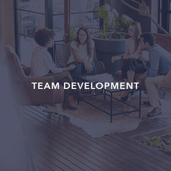 Team development by Inclusion international